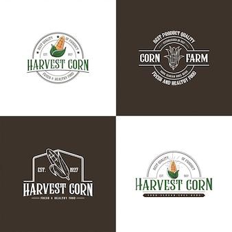 Modèle de logo de maïs vintage