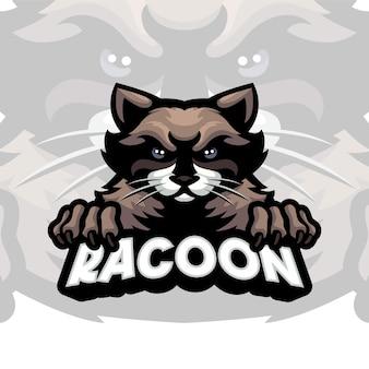 Modèle de logo de mascotte de raton laveur