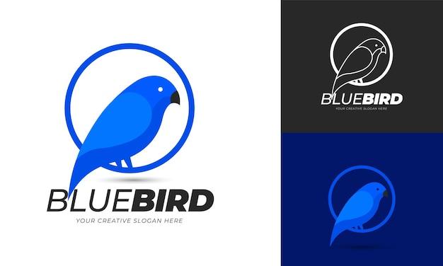 Modèle de logo oiseau bleu. vecteur modifiable