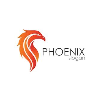 Modèle de logo de tête de phoenix