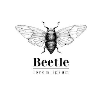 Modèle de logo vectoriel vectoriel dessinés à la main vintage avec coléoptère, bug, dor, dorr, insecte. illustration rétro