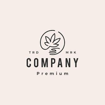 Modèle de logo vintage hipster soins cannabis chanvre