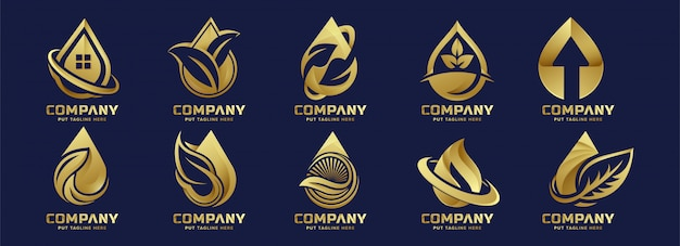 Modèle de luxe premium eco water drop logo pour entreprise