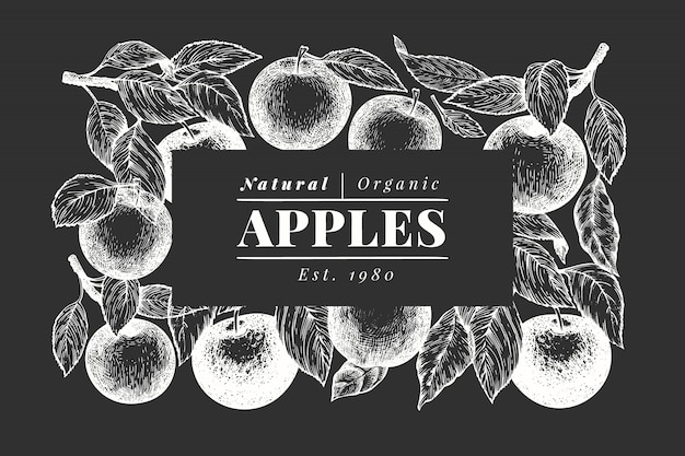 Modèle noir et blanc de branche apple.