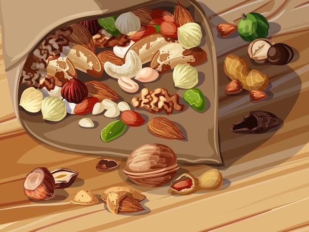 Modèle de noix de dessin animé