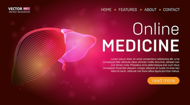Modèle de page de destination de médecine en ligne ou concept de conception de bannière de héros médical. organe de contour du foie humain dans le style d'art en ligne 3d sur fond abstrait