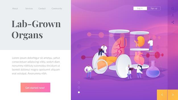 Modèle de page de destination des organes cultivés en laboratoire