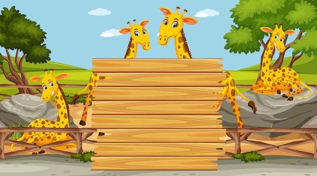 Modèle de panneau en bois avec des girafes heureux dans le parc