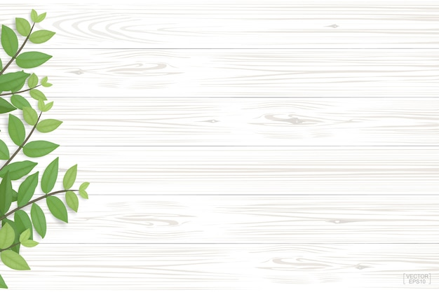 Modèle de planche de bois et texture avec des feuilles vertes pour fond naturel.