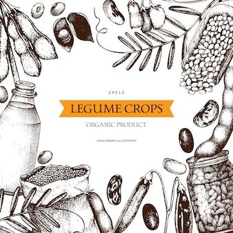 Modèle de plantes fraîches et biologiques de ferme. cadre de plantes de céréales et de légumineuses esquissé à la main