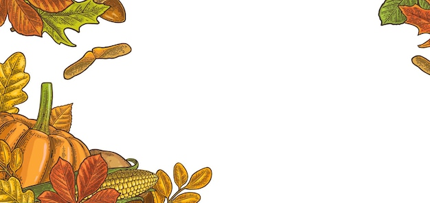 Modèle pour carte de voeux et affiche jour de thanksgiving avec citrouille, maïs, érable à feuilles, gland, châtaigne à graines. illustration de gravure de couleur vintage de vecteur isolé sur fond blanc.
