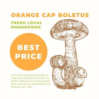 Modèle de publicité orange cap boletus. champignons dessinés à la main