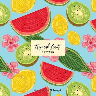 Modèle réaliste de fruits tropicaux dessiné à la main
