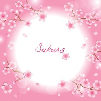 Modèle sakura