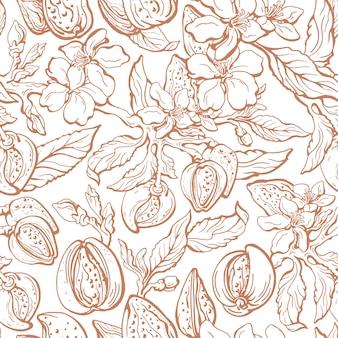 Modèle sans couture d'amande. branche vintage, noix, feuille. illustration florale. croquis dessiné main art