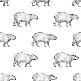 Modèle sans couture avec capybara.