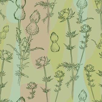 Modèle sans couture de chardon et globeflower
