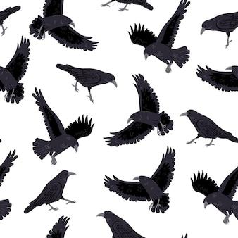 Modèle sans couture avec des corbeaux sur fond blanc. graphiques vectoriels.