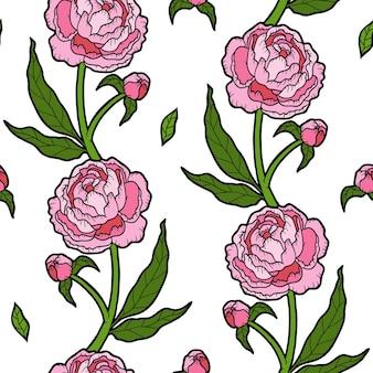 Modèle sans couture de couleur avec pivoine sur fond blanc