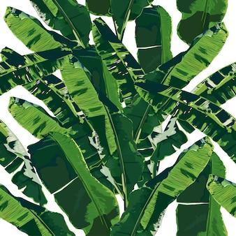 Modèle sans couture de feuilles de bananier sur fond isolé.