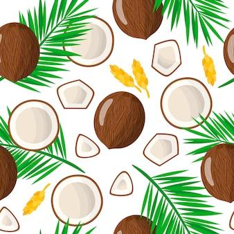 Modèle sans couture de dessin animé de vecteur avec cocos nucifera ou fruits exotiques de noix de coco, fleurs et feuilles sur fond blanc