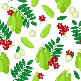 Modèle sans couture de dessin animé de vecteur avec des fruits exotiques, des fleurs et des feuilles de bilimbi ou de concombre sur fond blanc