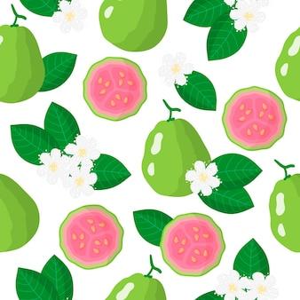 Modèle sans couture de dessin animé de vecteur avec des fruits exotiques de psidium ou de goyave, des fleurs et des feuilles sur fond blanc