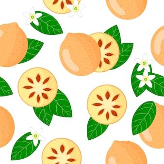 Modèle sans couture de dessin animé de vecteur avec des marmelos d'aegle ou des fruits exotiques de bael, des fleurs et des feuilles sur le fond blanc