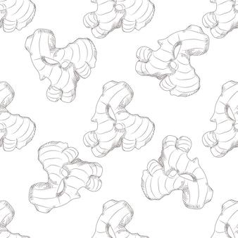 Modèle sans couture dessiné main racine de gingembre. style de gravure.