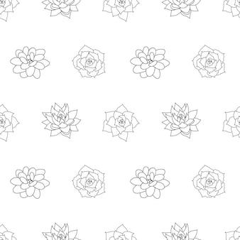 Modèle sans couture dessiné main succulente dans le contour de style doodle graphiques croquis fleur du désert maison