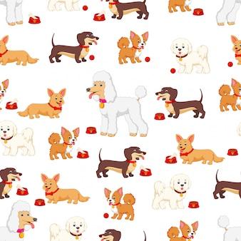 Modèle sans couture avec différents types de chiens