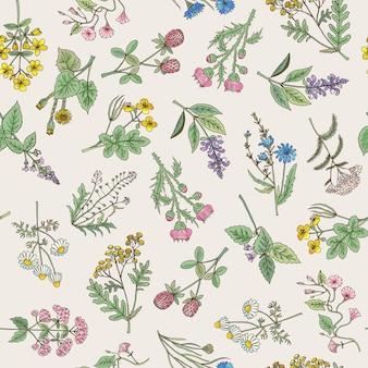 Modèle sans couture de diverses herbes et fleurs dessinées à la main