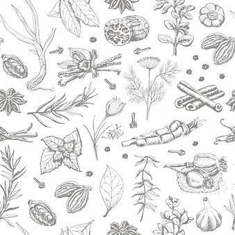 Modèle sans couture avec des épices et des herbes sur fond blanc