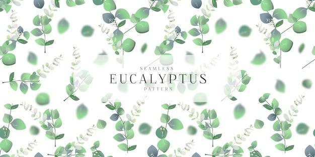 Modèle sans couture d'eucalyptus