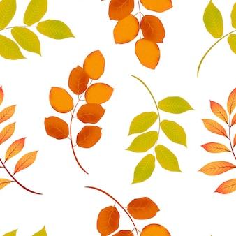 Modèle sans couture de feuille d'automne