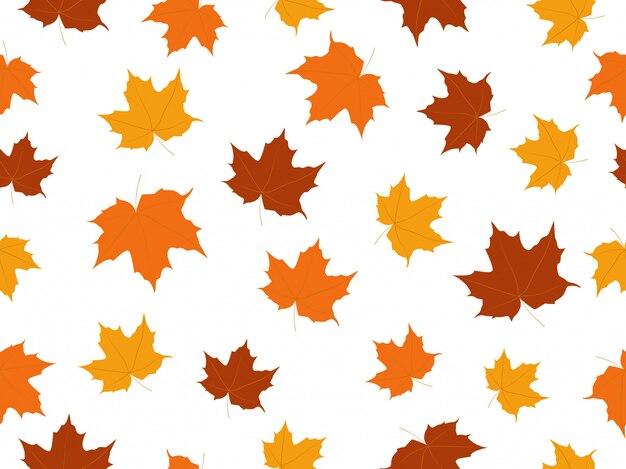 Modèle sans couture de feuilles d'érable