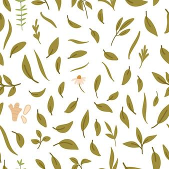 Modèle sans couture avec feuilles de thé, gingembre et herbes.