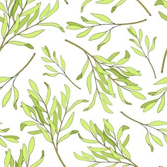 Modèle sans couture de feuilles de théier