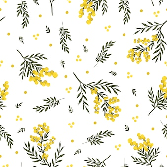 Modèle sans couture de fleur de mimosa