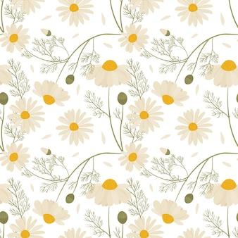 Modèle sans couture avec des fleurs de camomille sauvage