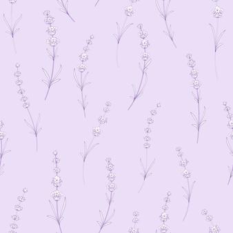 Modèle sans couture de fleurs de lavande.