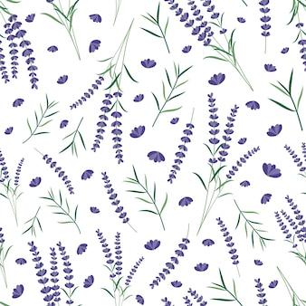 Modèle sans couture de fleurs de lavande