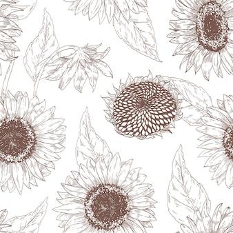 Modèle sans couture floral monochrome avec des têtes de tournesol