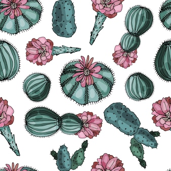 Modèle sans couture sur fond blanc de cactus en fleurs. délicat imprimé floral abstrait.