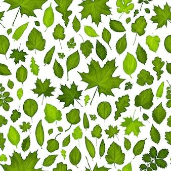 Modèle sans couture de fond de feuilles vertes