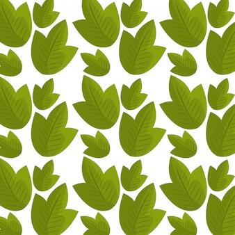 Modèle sans couture graphique d'écologie de feuilles et feuilles