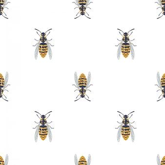 Modèle sans couture avec guêpe, insecte.