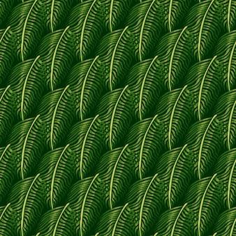 Modèle sans couture d'hawaï avec ornement de fougère botanique nature. éléments tropicaux de feuillage vert.