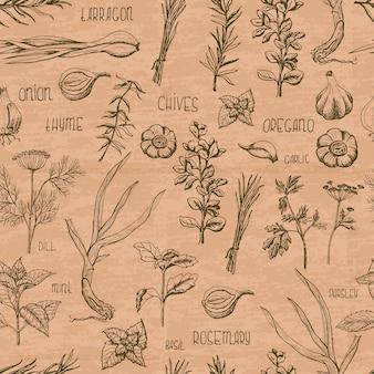 Modèle sans couture avec des herbes et des épices sur une couleur beige
