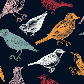 Modèle sans couture avec des illustrations d'oiseaux détaillées dessinées à la main dans un style gravé
